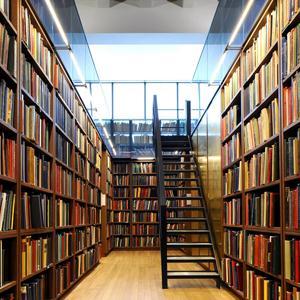 Библиотеки Аркадака